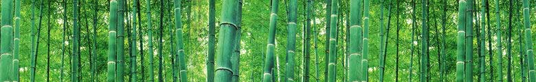 biomass from bamboo